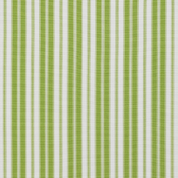 1294 Lime Classic