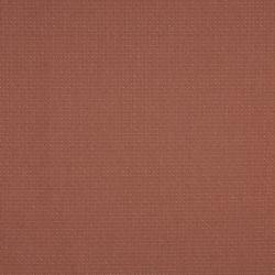 1496 Apricot