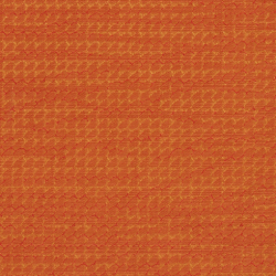 1708 Apricot