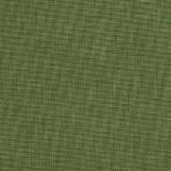 1743 Fern