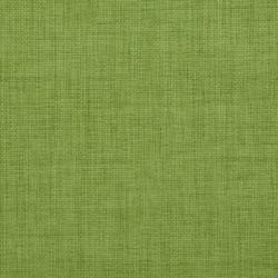 2000 Grass