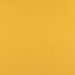 3102 Canary