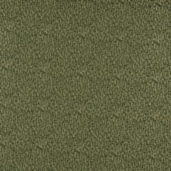 3765 Avocado