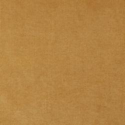 4214 Gold Stripe