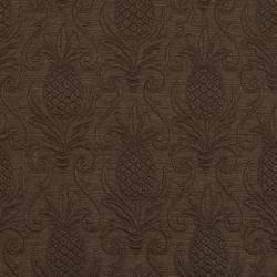 5520 Cocoa/Pineapple
