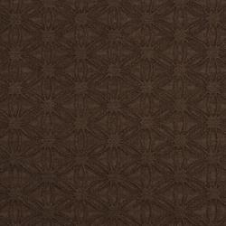 5528 Cocoa/Charm