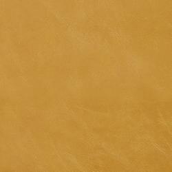 7404 Saffron
