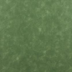 7719 Meadow
