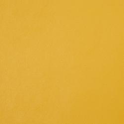8091 Canary