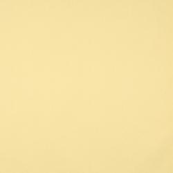 9448 Lemon