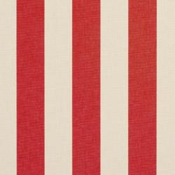 9547 Poppy Stripe