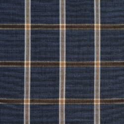 D141 Indigo Windowpane