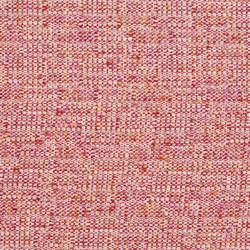 D345 Raspberry