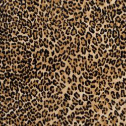 D412 Beige Jaguar