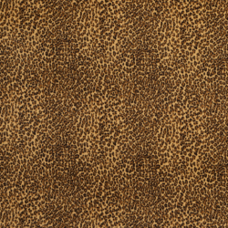 D415 Cheetah