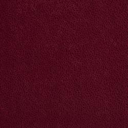D549 Merlot Vine