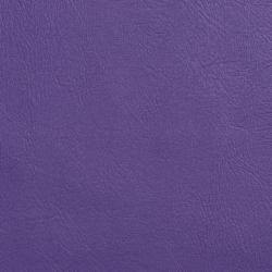 V127 Purple