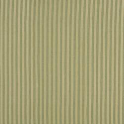 1129 Spring Stripe