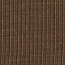 1169 Cocoa