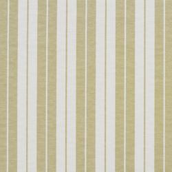1585 Meadow Stripe