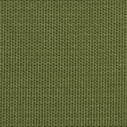 1719 Cactus