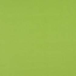 2469 Lime