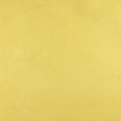 3080 Canary