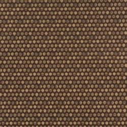 3574 Cocoa