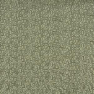 3591 Fern