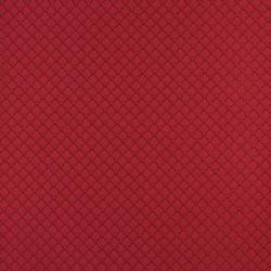 4354 Ruby Shell