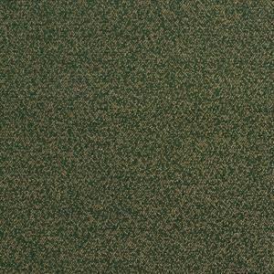 6715 Spruce