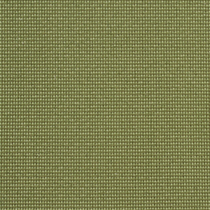 6745 Ivy/Dot