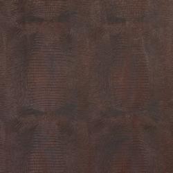 7014 Cocoa