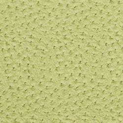 7269 Lime
