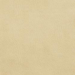 7277 Parchment
