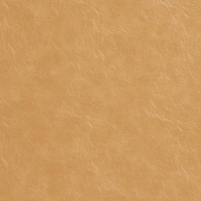 7485 Camel