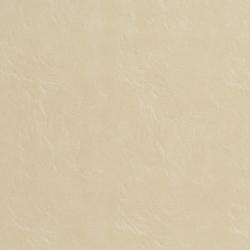 7486 Cream