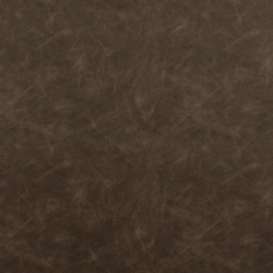 7561 Chocolate