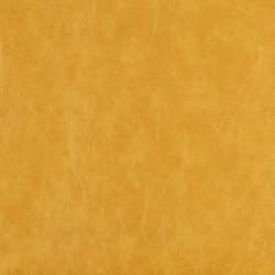 7629 Gold