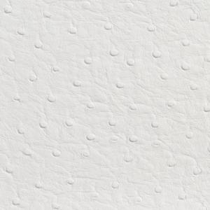 7700 White