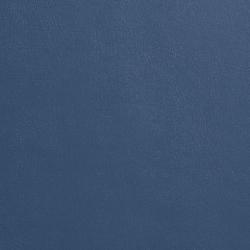 7938 Blue