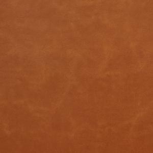 8253 Apricot