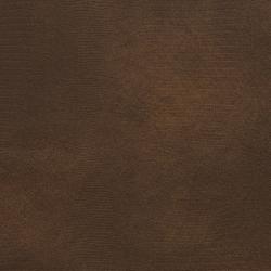 8274 Cocoa