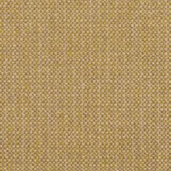8503 Kiwi