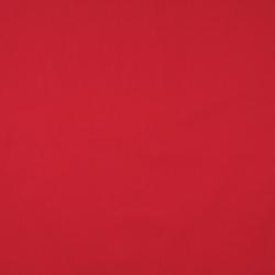 9467 Cardinal