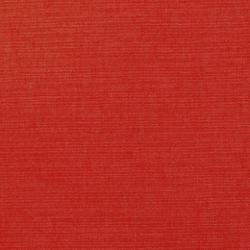 9539 Poppy