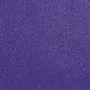 Allsport Violet
