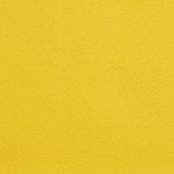 Allsport Yellow