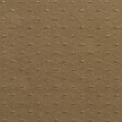 B168 Marsh Dot