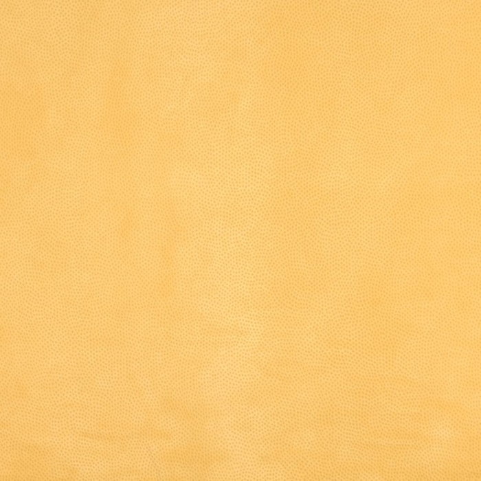B209 Marigold